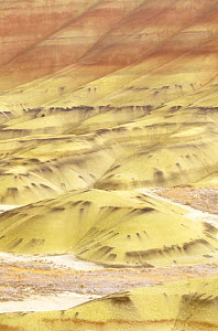 Painted hills, John Day Fossil Beds NM, Oregon, USA - Rob Tilley