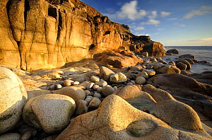Porth Nanven, nr St Just, Cornwall, UK - important example of quaternary geopmorphology: a raised Boulder beach, overlain by a considerable thickness of 'Head' deposits which demonstrates changes of s...  -  Ross Hoddinott