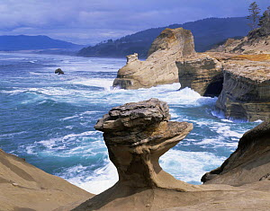 Sea surf against sandstone cliffs and rock formationa on the shore at Cape Kiwanda State Park, Oregon, USA  -  Kirkendall-Spring