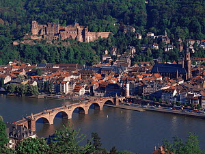 Heidelberg Castle and the old town viewed from across the Necker River, Heidelberg, Germany, Europe  -  Kirkendall-Spring
