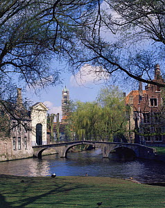 View of the River Dijver and historic buildings in Bruges, Belgium, Europe  -  Kirkendall-Spring