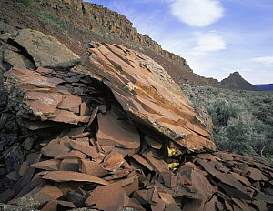 Basalt rock-formations on a hillside above Lenore Caves, Sun Lakes State Park, Washington, USA - Kirkendall-Spring