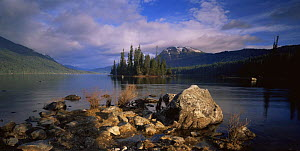Morning at Lake Wenatchee, Lake Wenatchee State Park, Washington, USA  -  Kirkendall-Spring