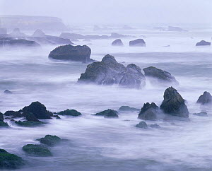 Long exposure of the view across Spooner's Cove in the mist, Montana De Oro State Park, California, USA - Kirkendall-Spring