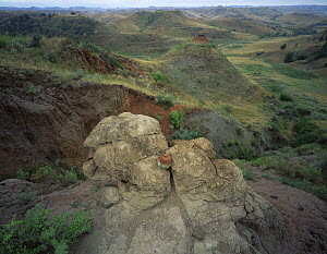 Clay formation in the prairies near Round Up Camp, Theodore Roosevelt NP, North Dakota, USA - Kirkendall-Spring