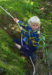 Young boy using rope to climb a woodland bank, Letham, Fife, Scotland, UK  -  Niall Benvie