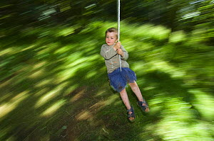 Young boy swinging through the forest, Letham, Fife, Scotland, UK, July  -  Niall Benvie