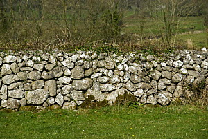Drystone wall, The Burren, County Clare, Ireland  -  Adrian Davies
