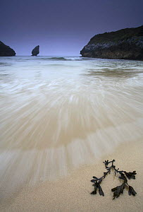 Sea washing up over beach with Seaweed, Buelna beach, El Picon, Llanes, Asturias, Spain  -  Jose B. Ruiz