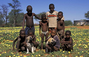 Children with Anatolian puppy (Canis familiaris). Namibia, East Africa. Ref: Cheetah Conservation Fund  -  Andrew Harrington