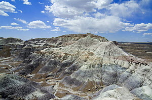 Blue Mesa Trail badlands formations, Painted Desert and Petrified Forest, Arizona, USA May 2007  -  Philippe Clement