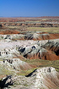 The Painted Desert, part of the Petrified Forest National Park stretches some 50,000 acres of colorful mesas, butes, and badlands, Arizona, USA May 2007  -  Philippe Clement