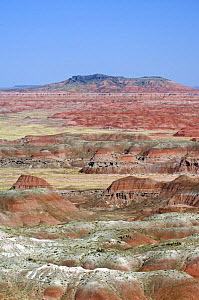 The Painted Desert, part of the Petrified Forest National Park stretches some 50,000 acres of colorful mesas, butes, and badlands, Arizona, USA  -  Philippe Clement