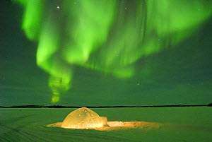 Igloo under northern lights, Northwest Territories, Canada March 2007 - Eric Baccega