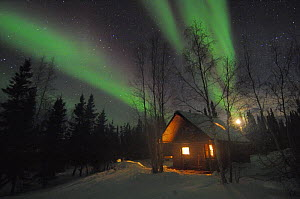 Cabin lit up at night under northern lights (Aurora borealis) Northwest Territories, Canada March 2007 - Eric Baccega