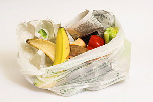 Biodegradable cornstarch bag with kitchen waste products ready for the compost heap, UK  -  Gary K. Smith