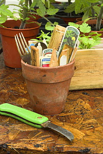 Plant labels and gardening utencils in terracotta plant pot, UK - Gary K. Smith