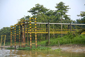 Pipeline for loading boats with palm oil directly from a plantation close to the Kinabatangan River, Sabah, Borneo, Malaysia - Christophe Courteau