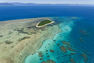 Aerial view of Green Island, on the Great Barrier Reef, Queensland, Australia  -  Jurgen Freund