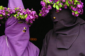 'Cucurucho' using bouganvillia to decorate their costumes during the catholic Good Friday celebrations commemorating the Passion and Death of Jesus Christ, Tingo, Pichincha Province, Andes, Ecuador - Pete Oxford