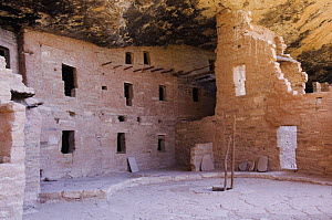 Spruce Tree House, ruined homes of the ancient pueblo people, Mesa Verde National Park, Colorado, USA, September 2007  -  Rolf Nussbaumer