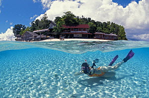 Woman Snorkler with tropical island in background, split level, Indo-Pacific  -  Jurgen Freund