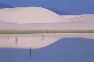 Sand dunes reflected in water, White Sands National Park, New Mexico, USA - Shattil & Rozinski