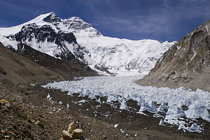 Rongbuk Glacier with Mount Everest, Tibet, June 07. 'Wild China' series  -  Gavin Maxwell