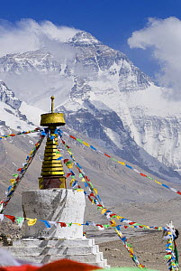 Rongbuk monastery with Mount Everest in background, Tibet, June 07. 'Wild China' series  -  Gavin Maxwell