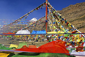 Prayer flags at the Saga Dawa festival, with Mount Kailash in the background, Tibet  -  Gavin Maxwell