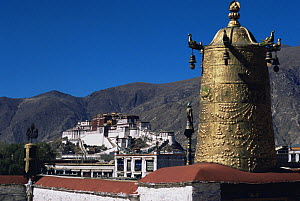 Golden Buddhist architecture with The Potala in the background: The Dalai Lama's ex-residence, Lhasa, Tibet 2007  -  Gavin Maxwell