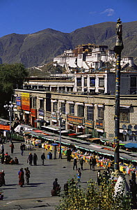 Street scene with The Potala in the background: The Dalai Lama's ex-residence, Lhasa, Tibet 2007  -  Gavin Maxwell