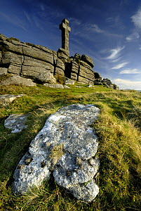 Widgery's Cross on Brat tor, Dartmoor NP, Devon, UK. - Ross Hoddinott