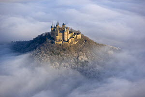 Hohenzollern castle emerging from the mist, Baden-wuerttemberg, Germany  -  Dietmar Nill