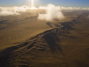 Aerial view of sand dunes near the Skeleton Coast, Namibia  -  Sue Flood