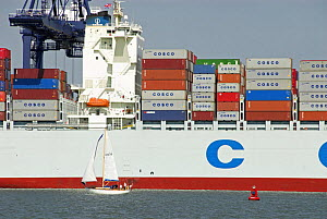 Container ship at dockyard with small sailing craft in foreground, Felixstowe, Suffolk, England, UK  -  Gary K. Smith