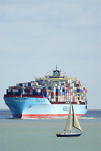 Container ship approaching Felixstowe docks with small sailing craft in foreground, Suffolk, England, UK  -  Gary K. Smith