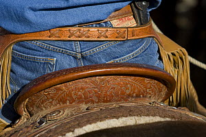 Detail of back of cowboy's saddle, jeans and chaps, Sombrero Ranch, Craig, Colorado, USA, model released  -  Carol Walker