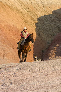 Cowboy, horse and dog on painted hills, Flitner Ranch, Shell, Wyoming, USA, model released  -  Carol Walker