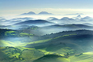 View of fields and mountains in the mist at dawn, Montellano, Seville, Spain  -  Jose B. Ruiz