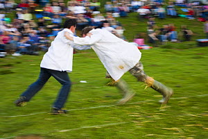 Shin kicking at the Cotswold Olympicks, a medieval custom and sporting event, Dovers Hill, Gloucestershire, UK  -  Nick Turner