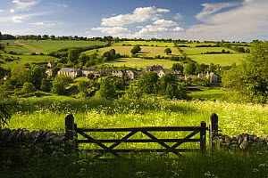 Gate into field looking towards Naunton, The Cotswolds, Gloucestershire - Nick Turner