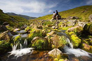 Walkers relaxing beside moorland stream, reading map at Llyn y Fan Fach, Brecon Beacons National Park, Powys, Wales - Nick Turner