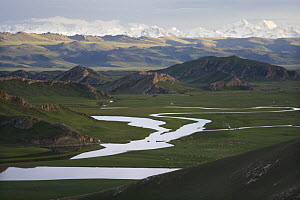 Watery landscape with scattered Mongolian Yurts at Swan Lake (also known as Bayanbulak) in Xinjiang Province, North-west China. June 2006, BBC ^Wild China^ series  -  George Chan