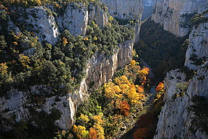 Looking down into the gorge of Arbayun, Navarra, Spain  -  Juan Manuel Borrero