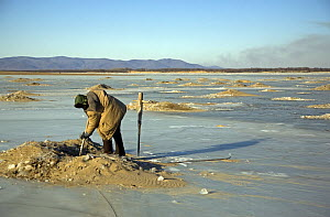 A fisherman from the Hezhe ethnic minority fishes through holes in the ice on the Black Dragon River, Heilongjiang Province, north-east China. January 2007  -  George Chan