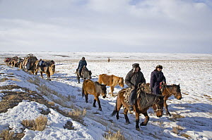 A Kazakh family following ancient migration routes, bringing their possessions and livestock down from the Altai mountains of Xinjiang Province, north-west China. February 2007  -  George Chan