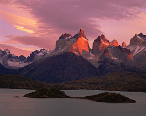 The peaks of the Torres del Paine, above Lake Pehoe, lit by the sunrise at Torres del Paine National Park, Chile  -  Jack Dykinga