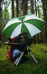 Gavin Thurston, cameraman, filming in Olympic NP, Washington, USA, June 1993  -  Neil Lucas
