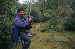 Photographer EA Kuttapan filming Tigers from a specially adapted tripod, Bandhavgarh NP, India  -  E.A. KUTTAPAN